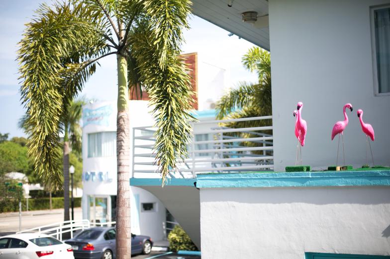 New Yorker Motel Miami Travel City Guide