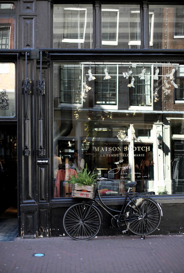 The Dashing Rider Amsterdam Travel Guide Reiseblog