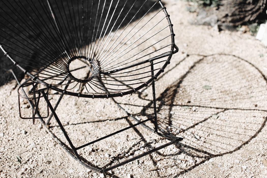 The Dashing Rider Austin, Texas Travel Guide
