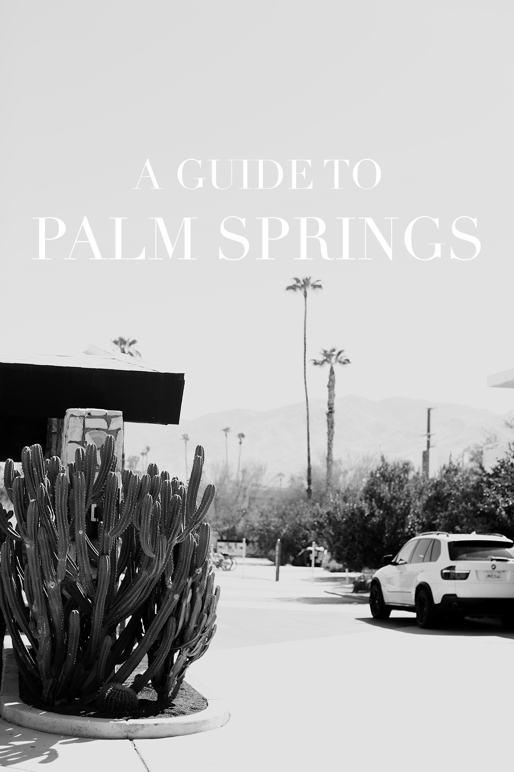 The Dashing Rider Palm Springs Mini Guide
