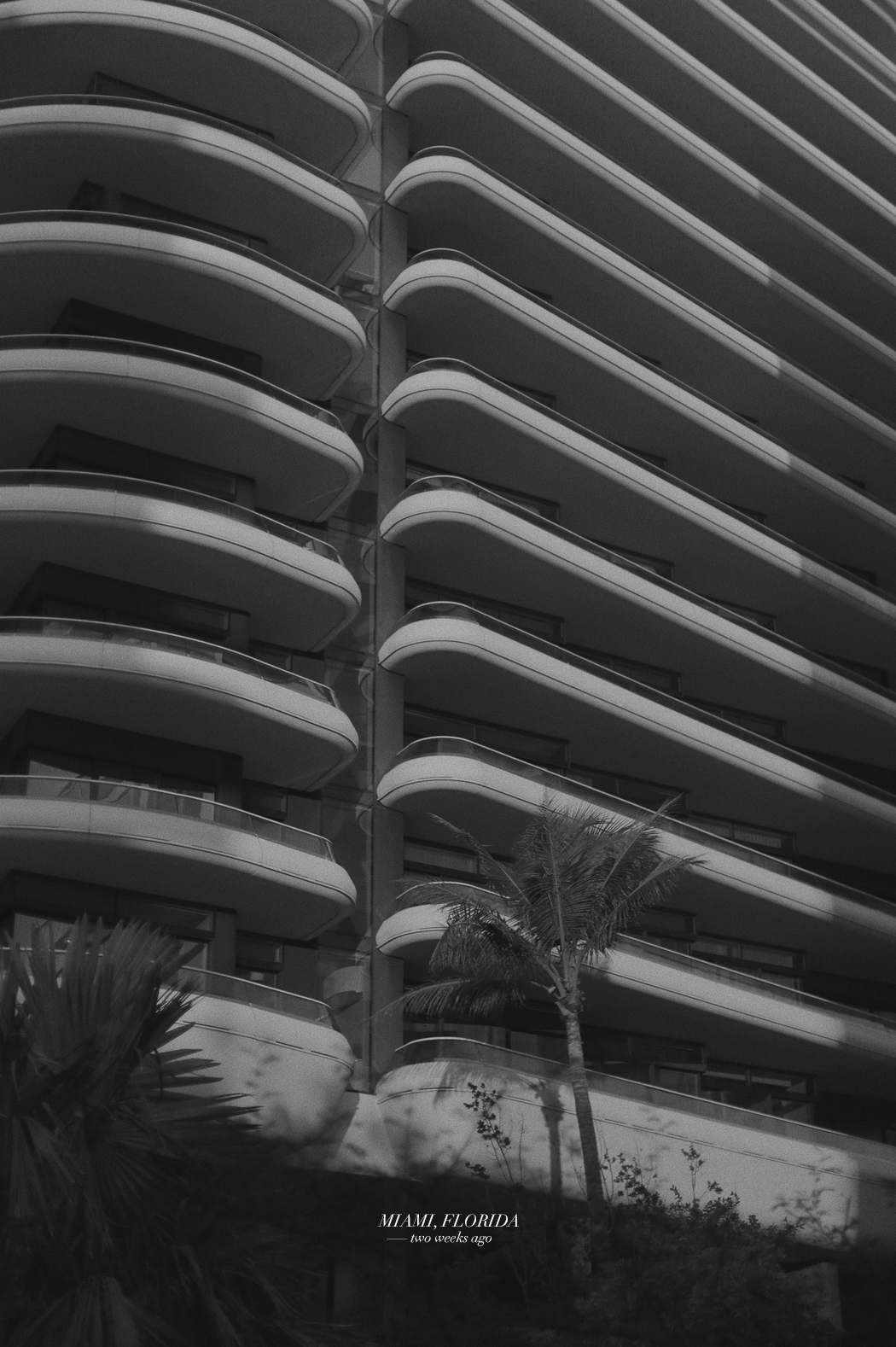 Miami Beach, Florida - Art Basel 2017 - Fiona Dinkelbach