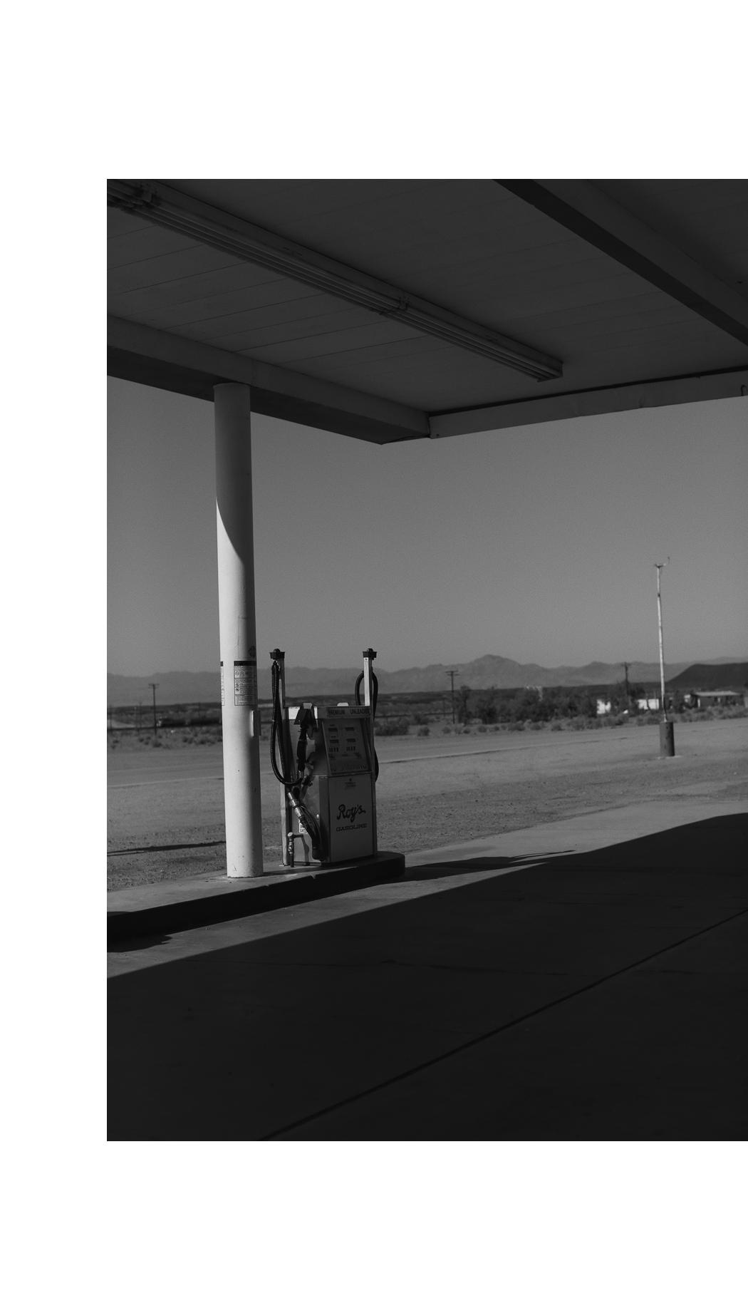 MOJAVE DESERT - Amboy, CALIFORNIA - Fiona Dinkelbach