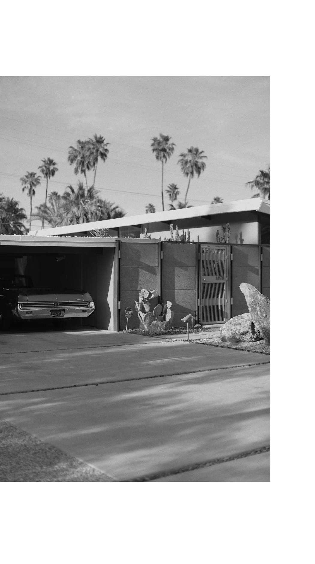 Palm Springs - Classic Car & Mid-Century House - Fiona Dinkelbach