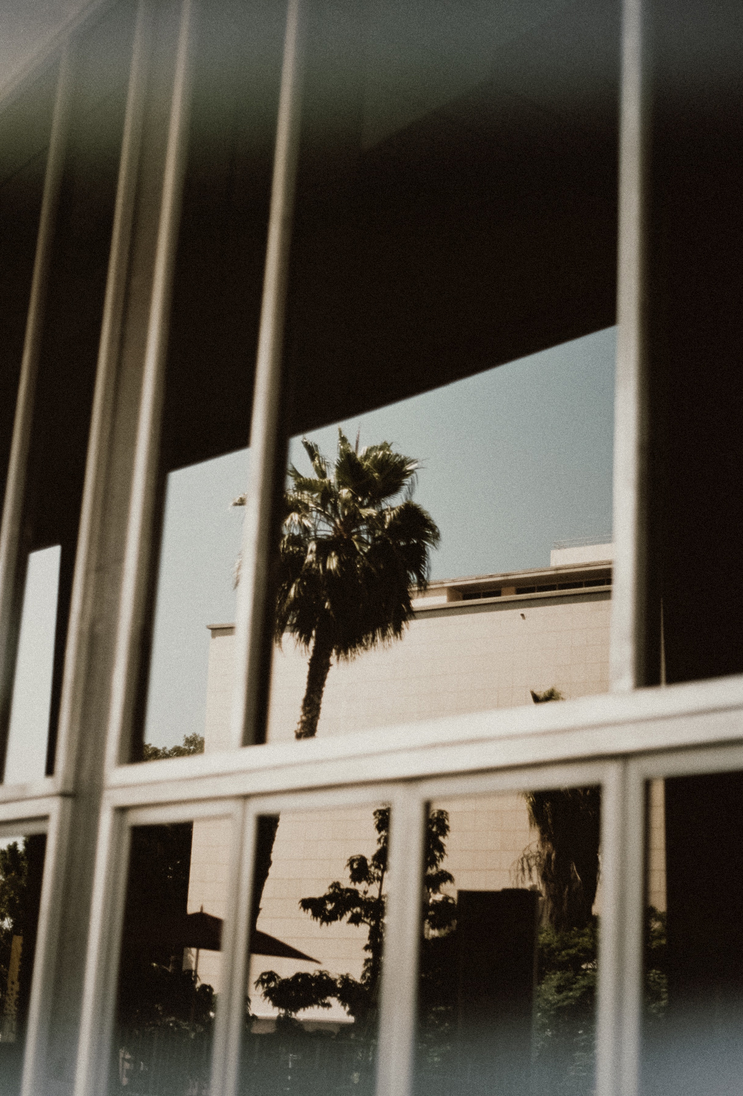 Los Angeles On Film. Shot by Fiona Dinkelbach